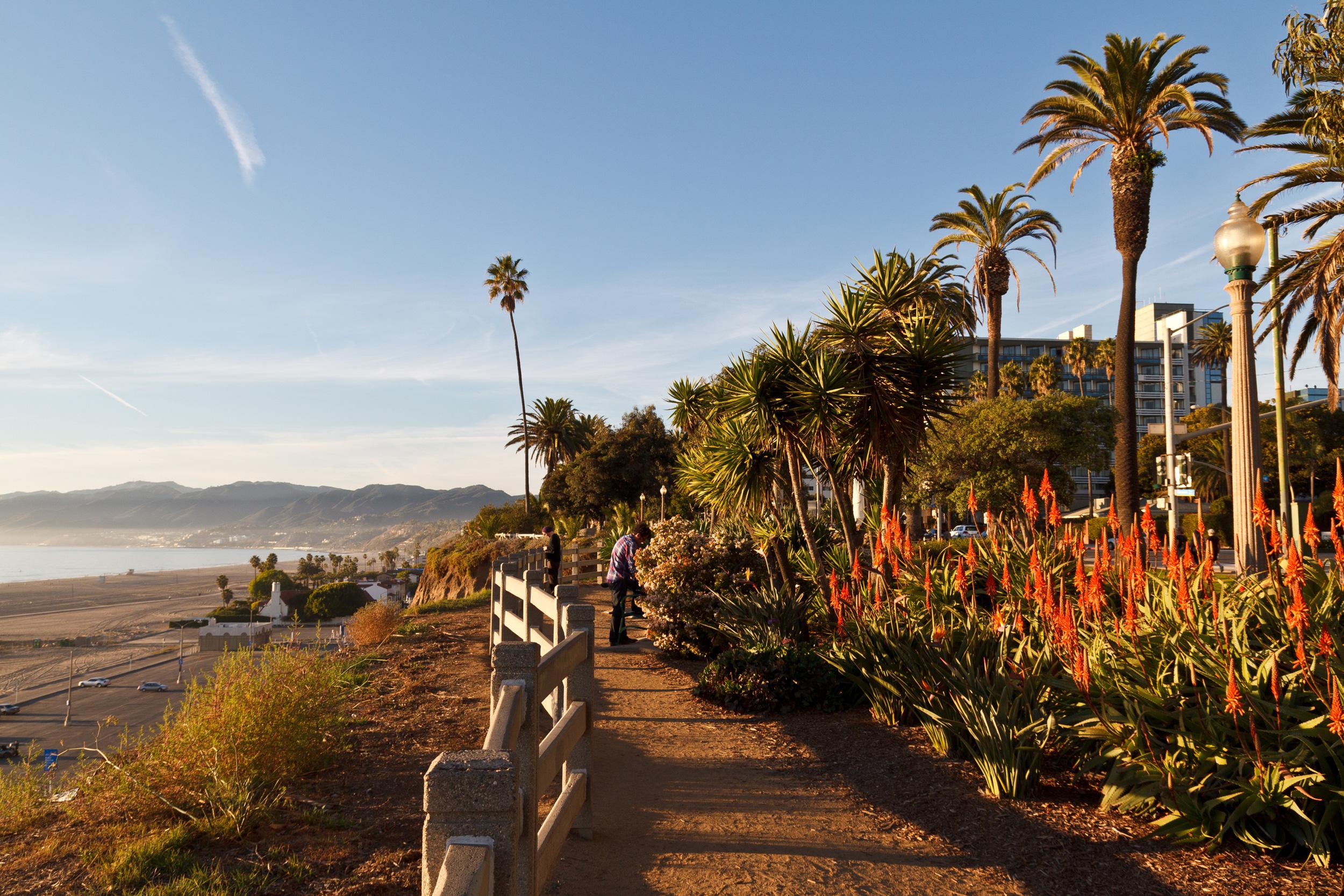 Santa Monica CFPR